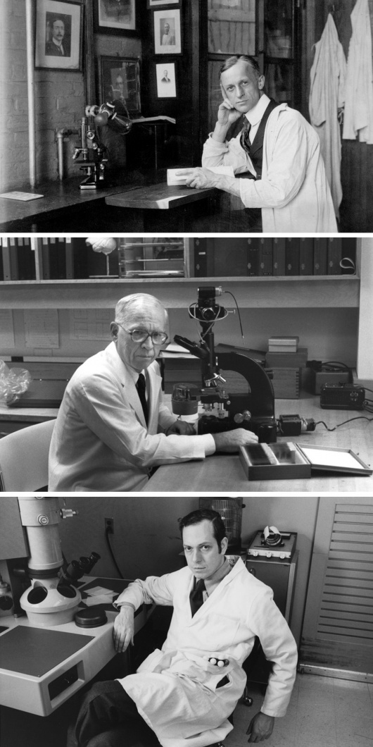 Our History - The Solomon H Snyder Department of Neuroscience
